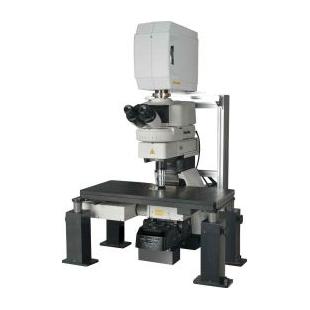 尼康   A1R MP +多光子共焦显微镜