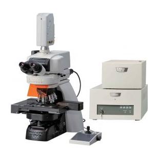 尼康   C2 +共聚焦显微镜