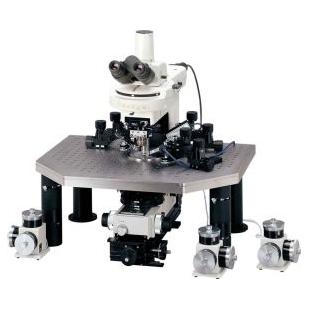 尼康  Eclipse FN1 正置显微镜