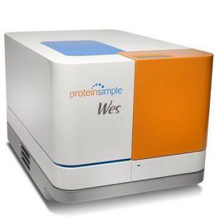 Wes全自动蛋白质表达定量分析系统