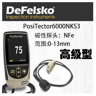 美国Positector6000NKS3分体漆膜测厚仪