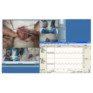 DB129型 多媒体机能同步反馈系统、医学同步反馈系统