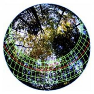 HemiView數字植物冠層分析系統