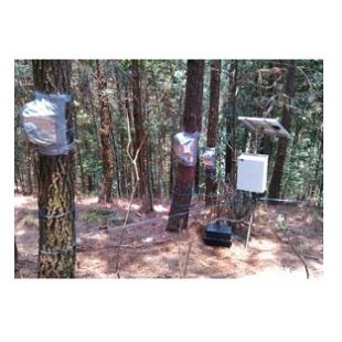 SF-L四針莖流(液流)測量系統