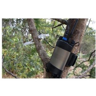 PSY1 原位茎干水势测量仪