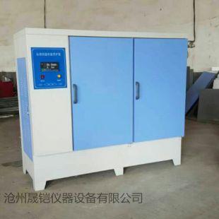 晟铠仪器YH-60B型标准恒温恒湿养护箱
