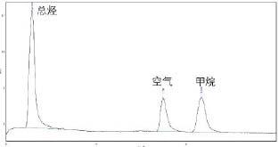 环境空气中非甲烷总烃(NMHC)的气相色谱仪测定