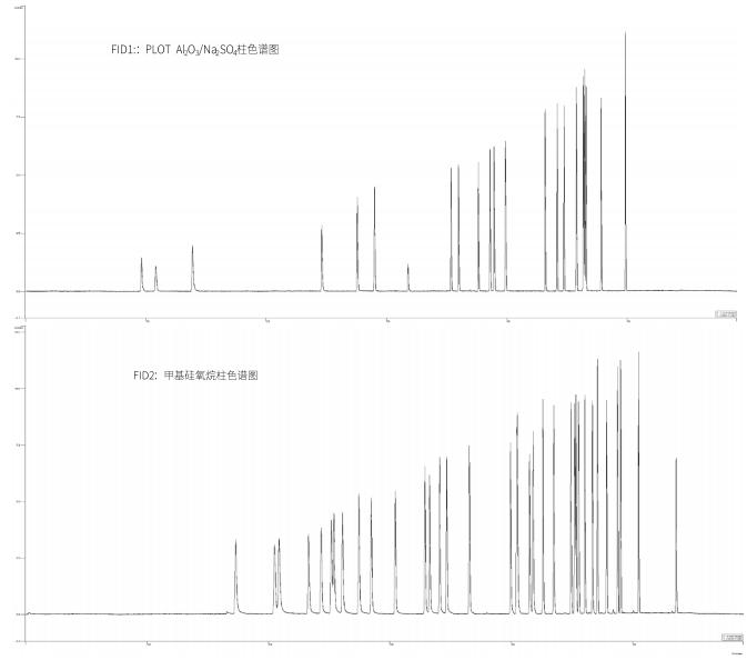图1.双FID一针进样分析57种PAMS物质结果色谱图.png
