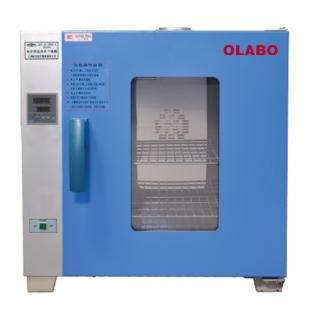 欧莱博电热恒温鼓风干燥箱DHG-9053A