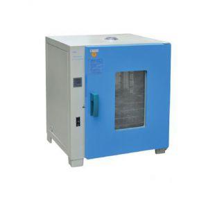 一恒鼓风干燥箱DHG-9245A