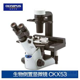 奧林巴斯倒置生物顯微鏡CKX53