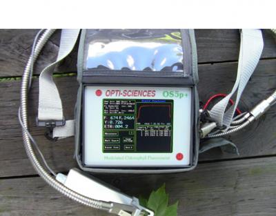 美国OPTI-SCIENCES OS-5p+便携式脉冲调制叶绿素荧光仪