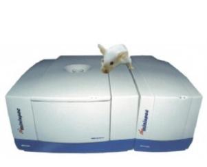德国Bruker LF50小动物身体组分分析仪