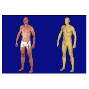 Anthroscan Bodyscan 彩色全身扫描