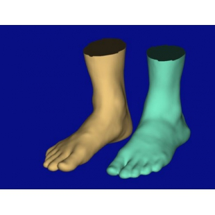 Anthroscan Foot3D 足部手部扫描