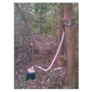 树干截流监测系统