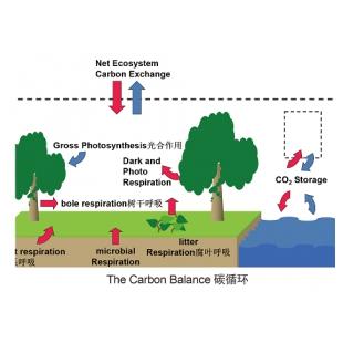 土壤剖面CO2廓线测量系统