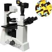 倒置式生物显微镜
