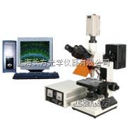 CFM-330EC上海長方數碼熒光顯微鏡