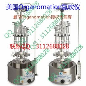 12位美国Organomation氮吹仪