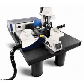 徕卡共聚焦显微镜 Leica TCS SP8 CARS