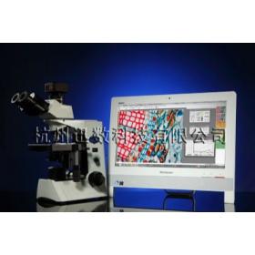 迅数_MIC型显微图像分析系统