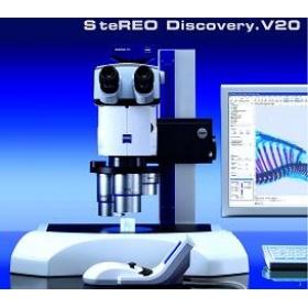 体式显微镜 SteREO Discovery.V20