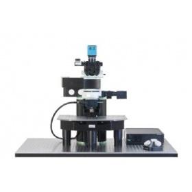 双光子荧光显微镜