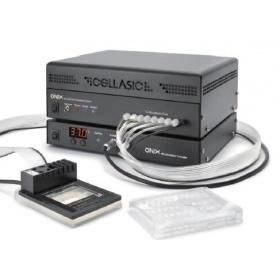 CellASIC微流控活细胞芯片实验室