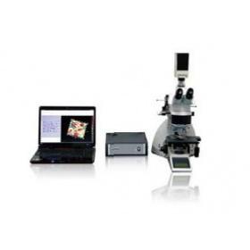 3D共聚焦扫描显微镜