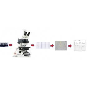 LEICA自動夾雜物檢查系統