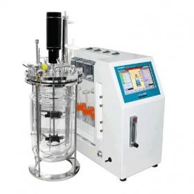 Liflus GX实验室发酵罐(韩国Biotron)