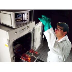 BioSpherix C42高级可编程三气培养箱(低氧\高氧\间歇性缺氧)