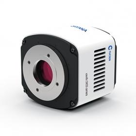 量子效率90%背照式sCMOS相机