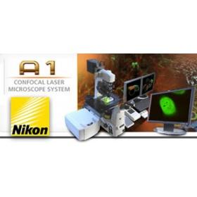 共聚焦显微镜