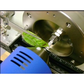 DART® SVP 实时直接分析-质谱系统