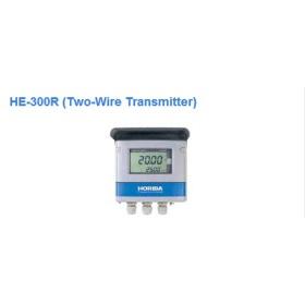 日本 HORIBA 工业在线电阻率监测仪HE-300R