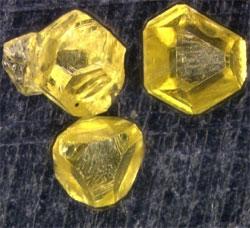 野全域に合焦したダイヤモンド画像