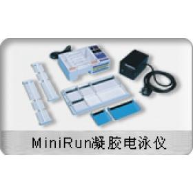 杭州博日 凝膠電泳儀(MiniRun)GE-100