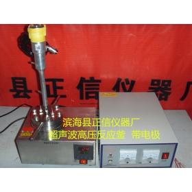 超声波电极高压釜
