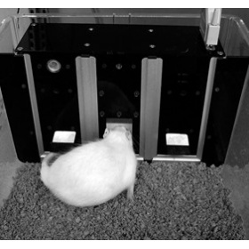 小動物操作學習模塊系統