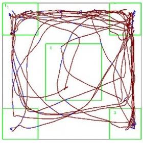 多功能視頻跟蹤分析系統