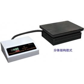 莱玻特瑞DS12-45等静压石墨电热板