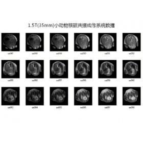 1.5T小动物核磁共振成像系统(永磁磁体)