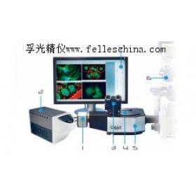 鈣成像系統