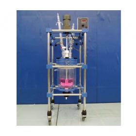 HEP-5L双层玻璃反应釜