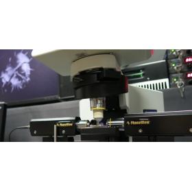 Phaseview3D激光片层扫描系统 Alpha