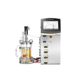 BIOSTAT® B – 台式生物反应器