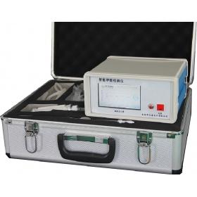 智能可燃气气体检测仪