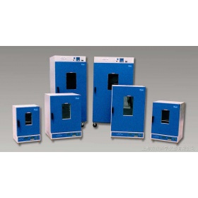 DGG-9246A立式电热恒温鼓风干燥箱